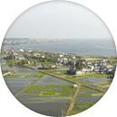 霞ヶ浦周辺の写真です。